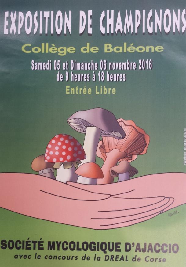Exposition de champignons par la Société Mycologique d'Ajaccio le 5 et 6 novembre 2016!