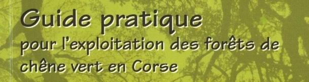 Guide de sylviculture du chêne vert
