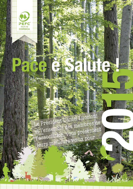 Meilleurs voeux 2015 Pace è Salute