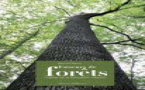 Faiseurs de forêts, recueil de portraits d'hommes et de femmes