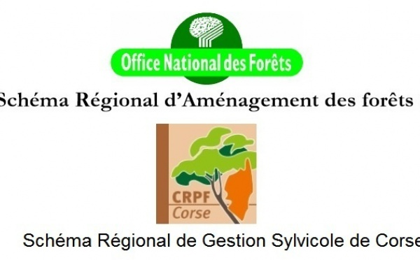 Les documents de gestion durable en forêt